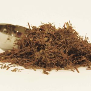 loose leaf sweet wormwood tea